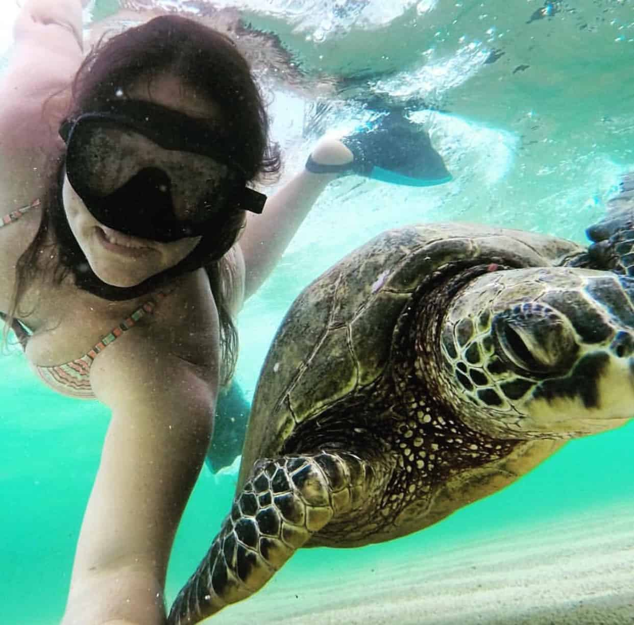 Turtle selfie during Kauai Snorkeling Tour