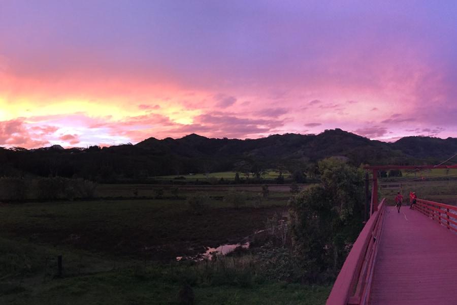 Zipline Tour Kauai
