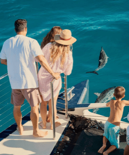 Family watching dolphin on Napali Coast Boat Cruise