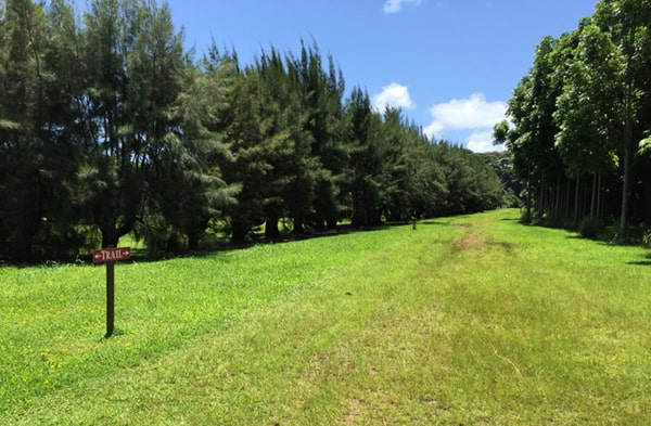 Wai Koa Loop Trail