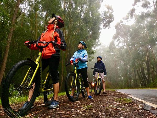 Downhill Bike Tour Kauai