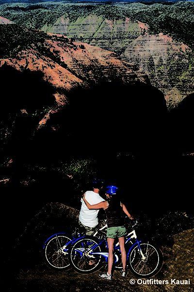 Waimea Canyon Downhill Tour - Lookout Point