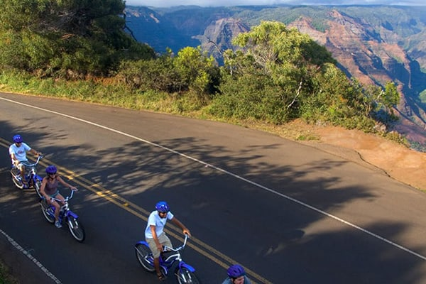 Waimea Canyon Bicycle Tour