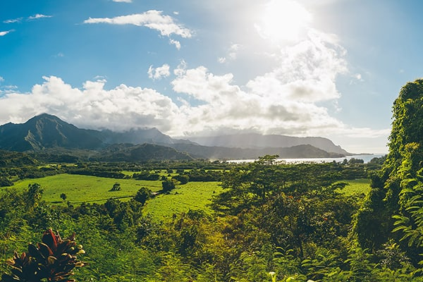 Kauai Movie Tour - Hanalei Bay from above